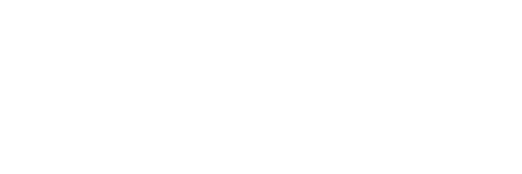 intesa for value logo